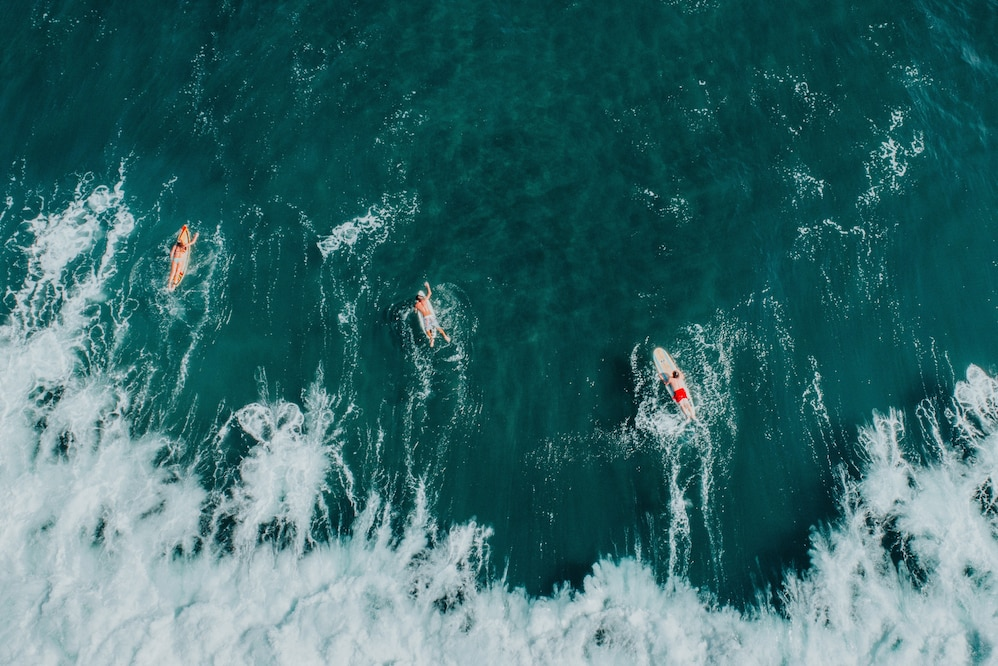 Surfers in the waves near a beach