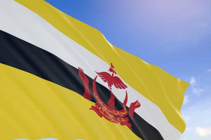 The flag of Brunei