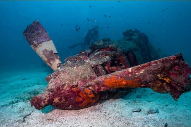 A plane wreck from World War 2