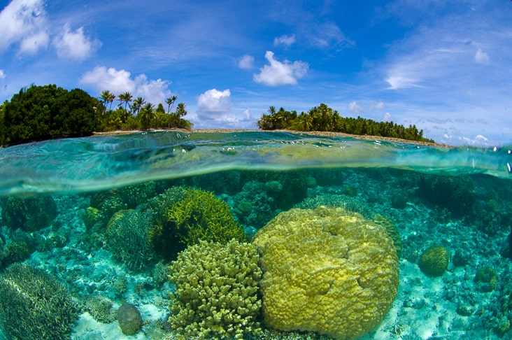 Coral reef in the Marshall Islands