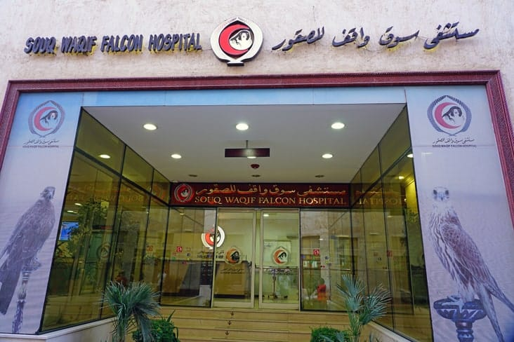 The falcon hospital in Doha