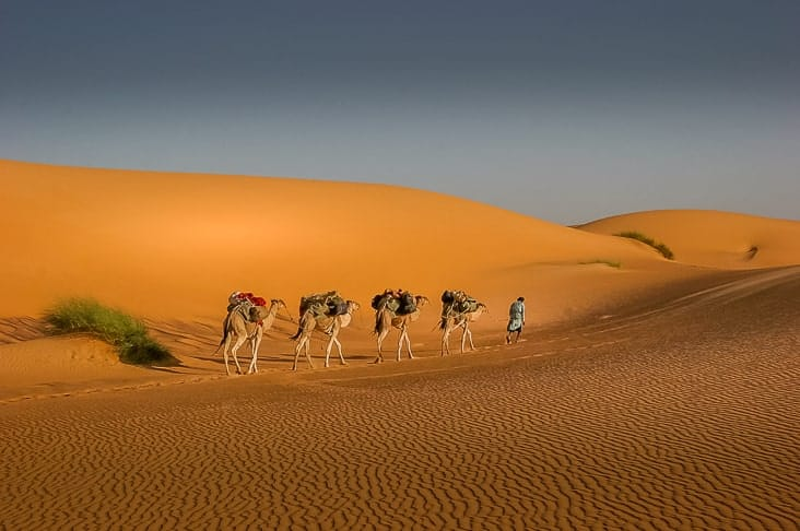 Interesting facts about Mauritania include the largest desert in the world