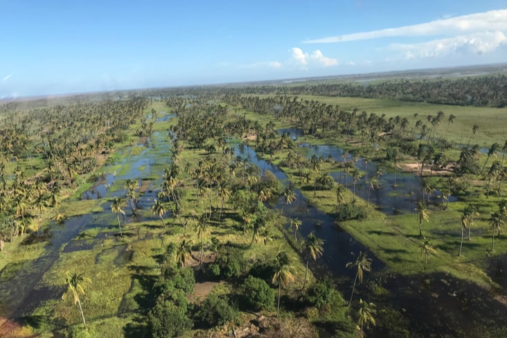 Flooded fields in Mozambique