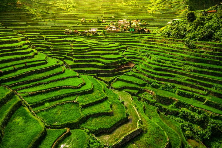 Interesting facts about the Philippines include its remarkable rice terraces