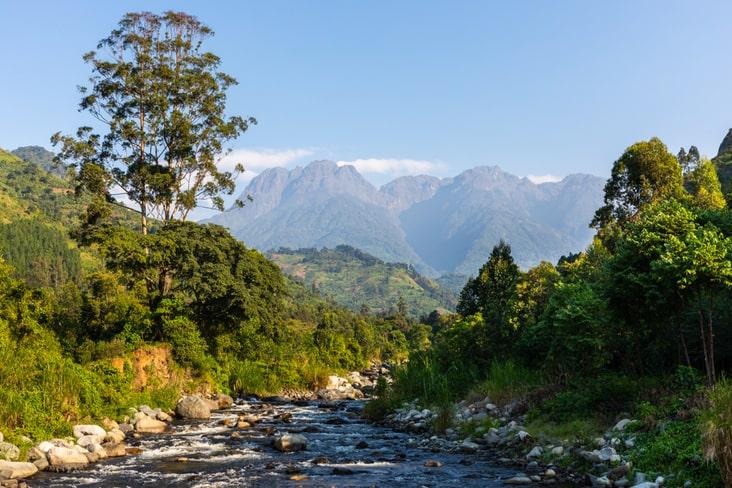 The Rwenzori Mountains in Uganda