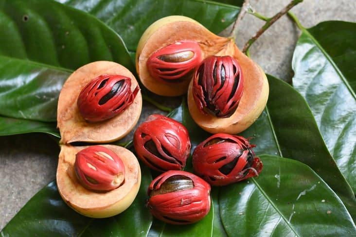 Nutmeg seeds