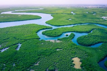 24 interesting facts about the Gambia