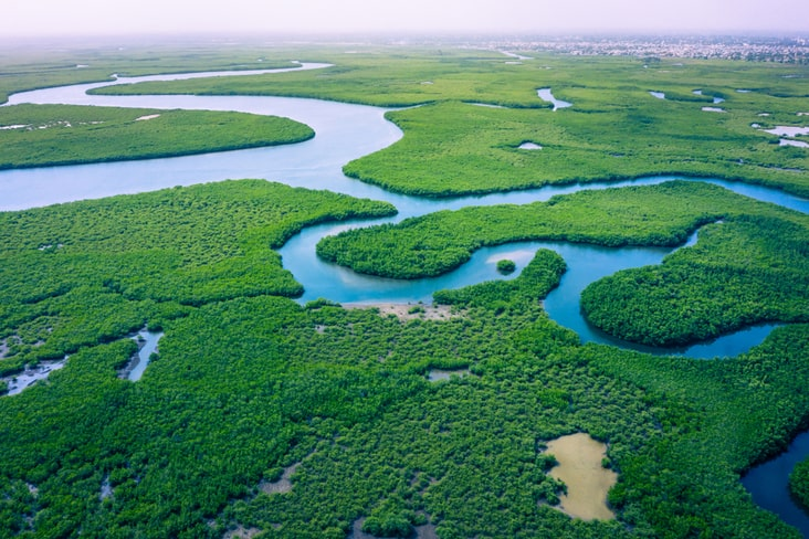 The Gambia River accounts for several interesting facts about the Gambia