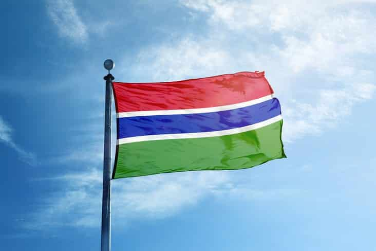 The Gambia's flag