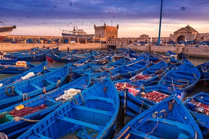 Fishing boats in Essaouira